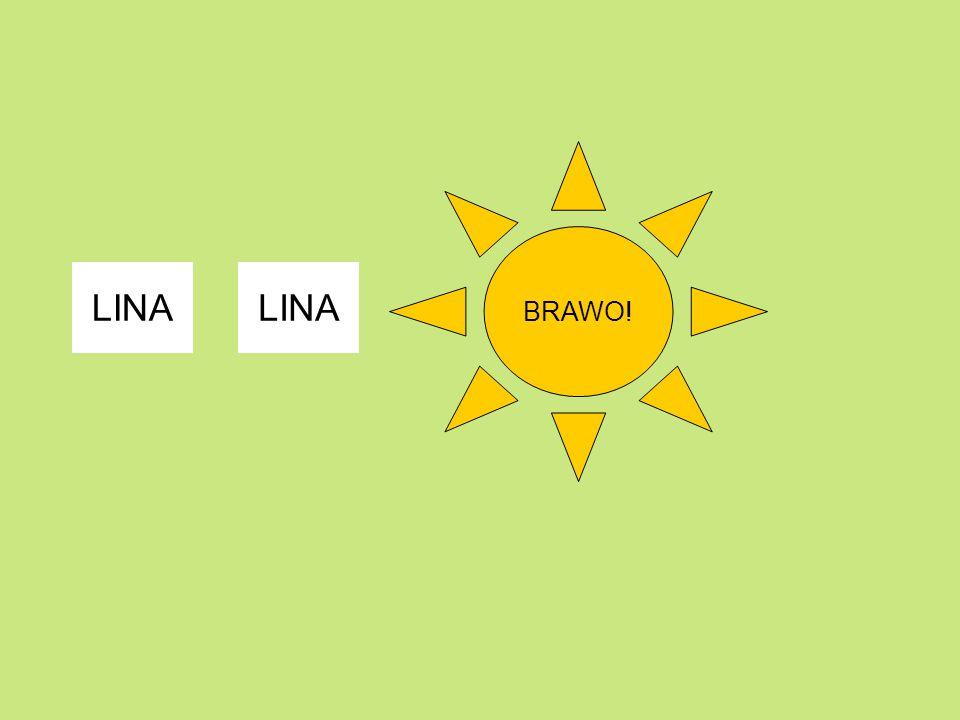 BRAWO! LINA LINA