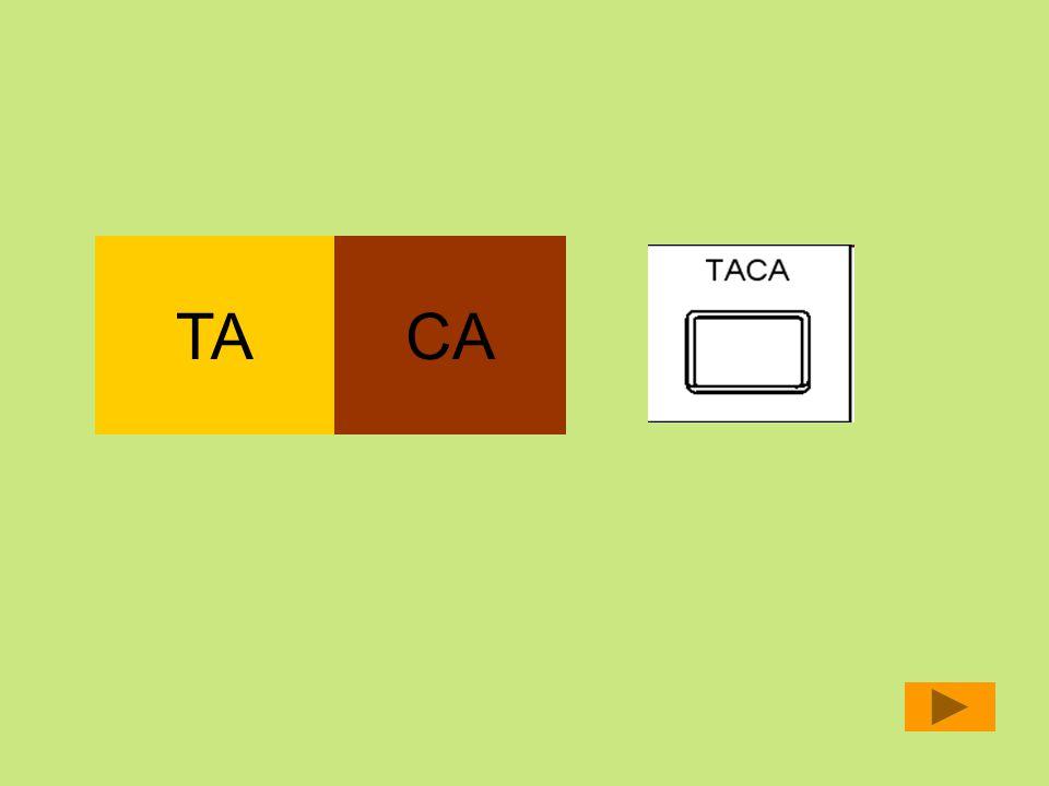 TA CA
