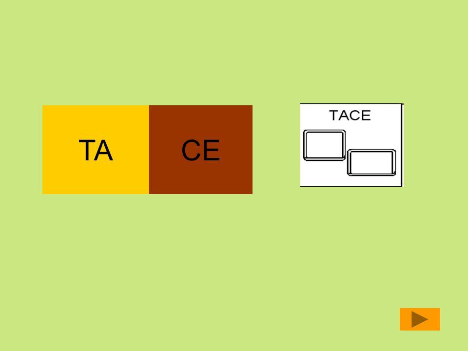 TA CE