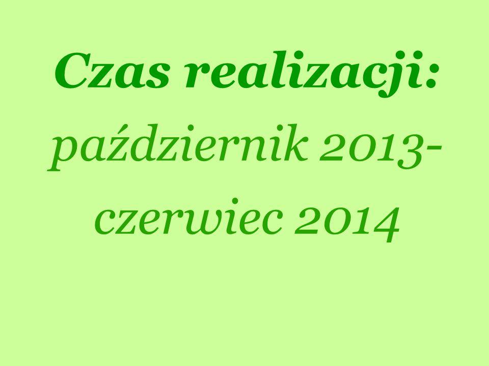 Czas realizacji: październik 2013- czerwiec 2014