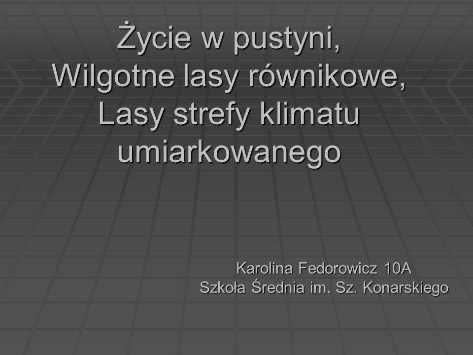 Karolina Fedorowicz 10A Szkoła Średnia im. Sz. Konarskiego