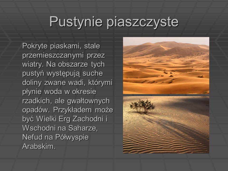 Pustynie piaszczyste