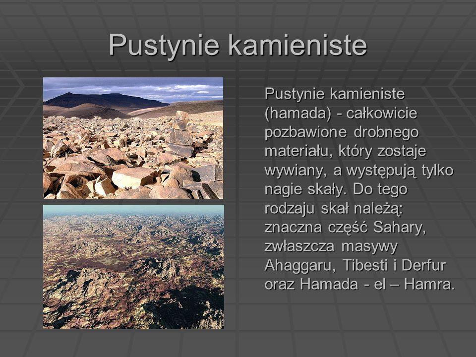 Pustynie kamieniste