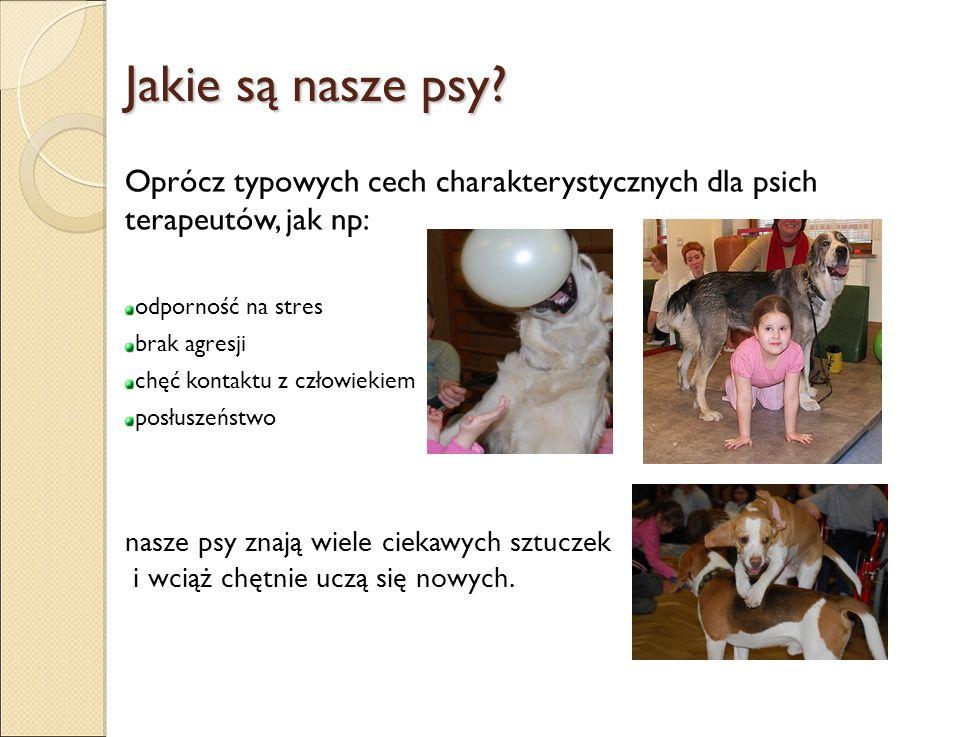 Jakie są nasze psy Oprócz typowych cech charakterystycznych dla psich terapeutów, jak np: odporność na stres.