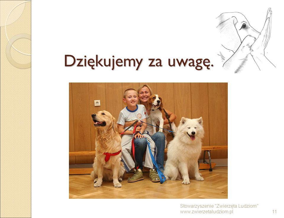 Dziękujemy za uwagę. Stowarzyszenie Zwierzęta Ludziom www.zwierzetaludziom.pl 11 11