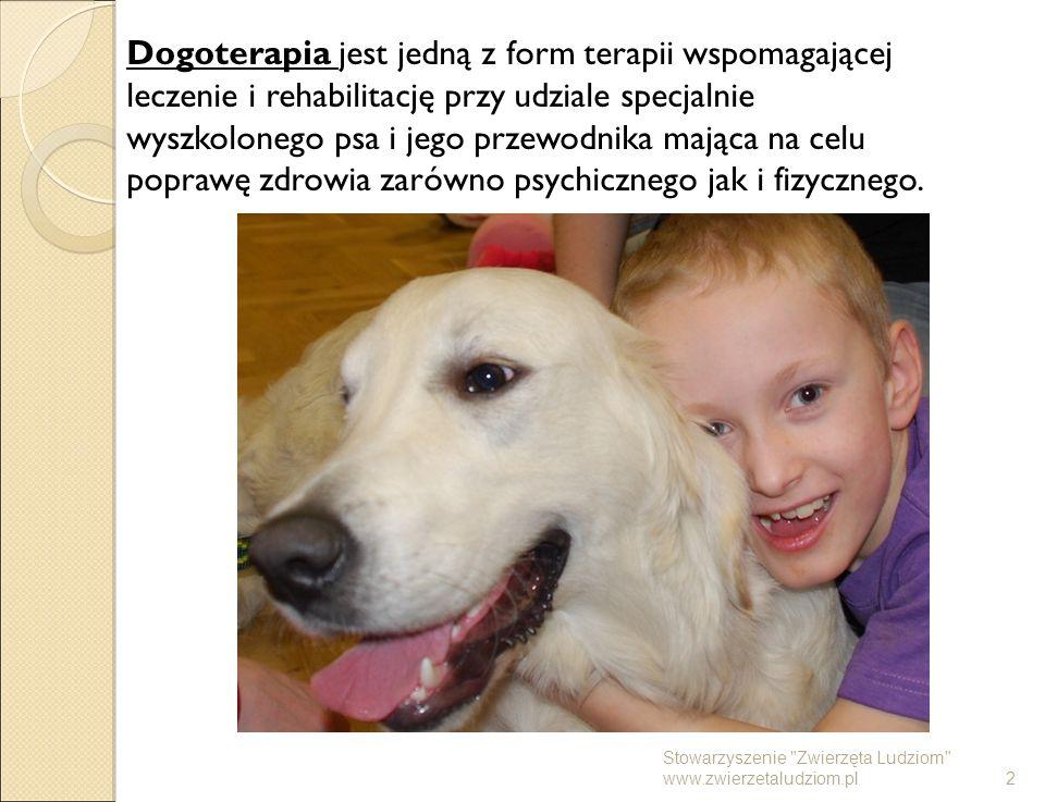 Dogoterapia jest jedną z form terapii wspomagającej