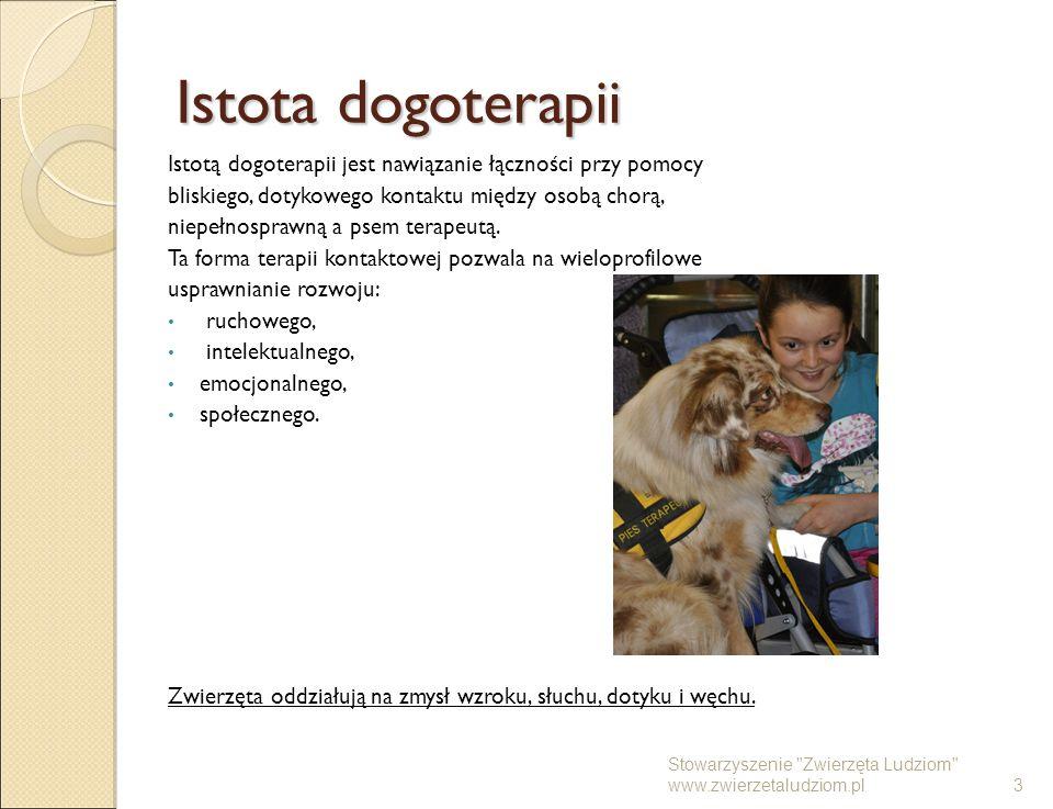 Istota dogoterapii Istotą dogoterapii jest nawiązanie łączności przy pomocy. bliskiego, dotykowego kontaktu między osobą chorą,