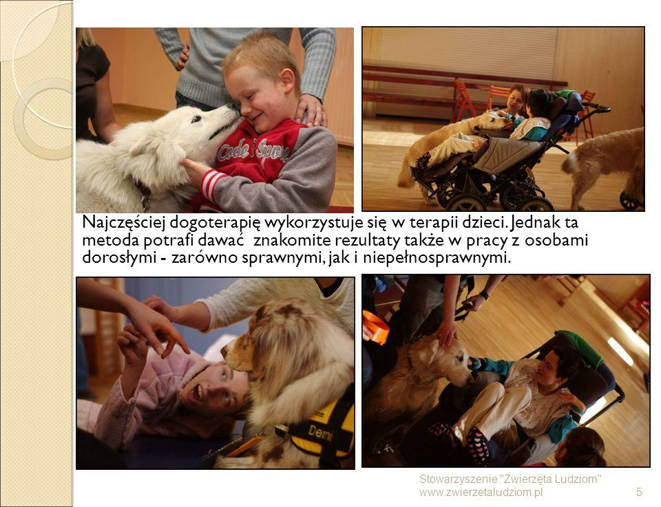Najczęściej dogoterapię wykorzystuje się w terapii dzieci