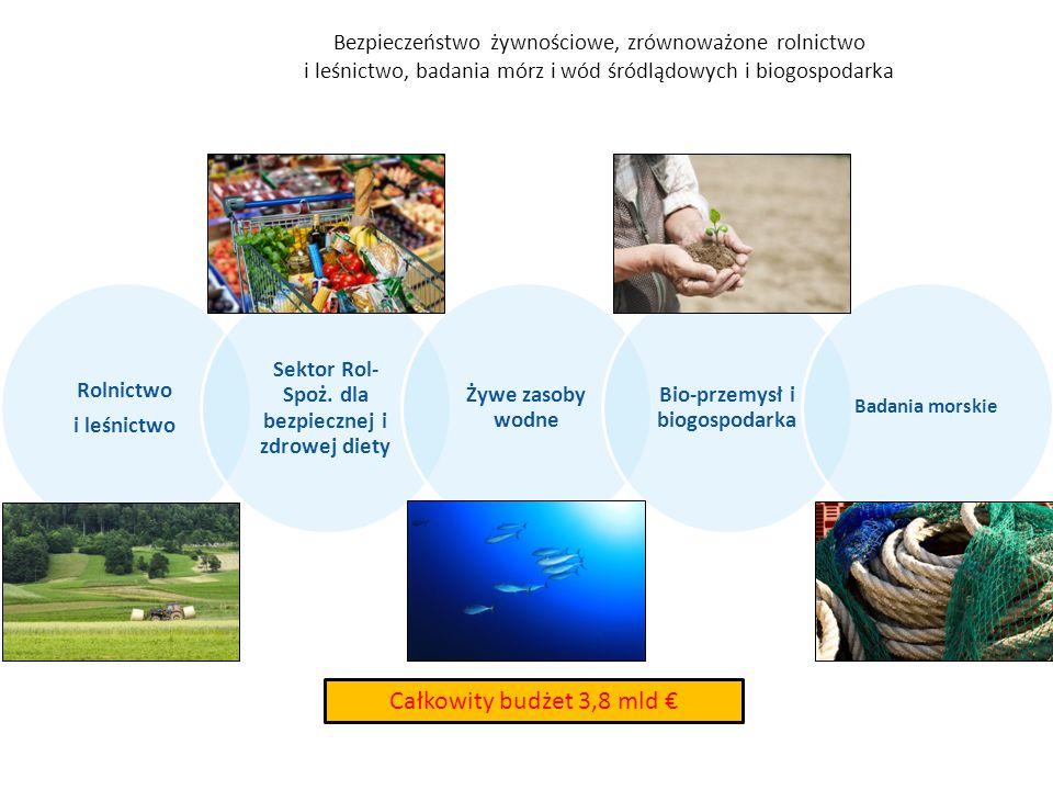 Bezpieczeństwo żywnościowe, zrównoważone rolnictwo i leśnictwo, badania mórz i wód śródlądowych i biogospodarka