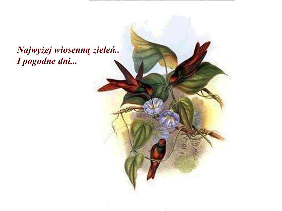 Najwyżej wiosenną zieleń..