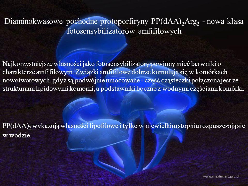 Diaminokwasowe pochodne protoporfiryny PP(dAA)2Arg2 - nowa klasa fotosensybilizatorów amfifilowych