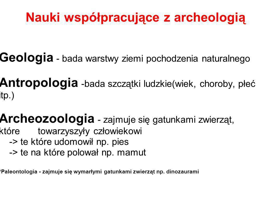 Nauki współpracujące z archeologią