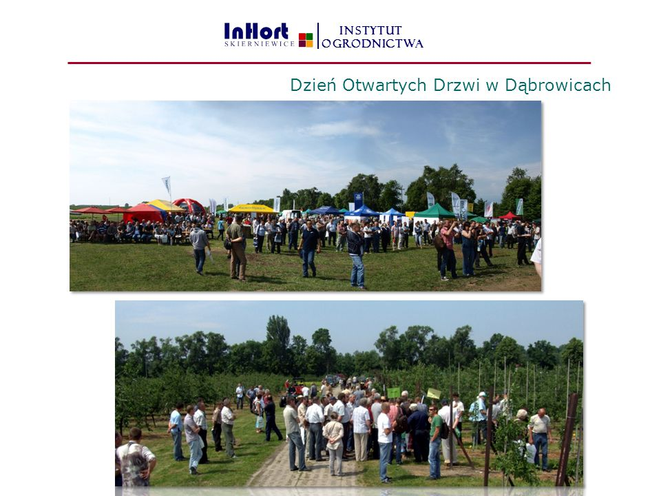 Dzień Otwartych Drzwi w Dąbrowicach