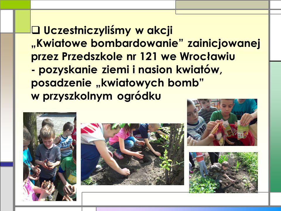 """Uczestniczyliśmy w akcji """"Kwiatowe bombardowanie zainicjowanej przez Przedszkole nr 121 we Wrocławiu - pozyskanie ziemi i nasion kwiatów, posadzenie """"kwiatowych bomb w przyszkolnym ogródku"""