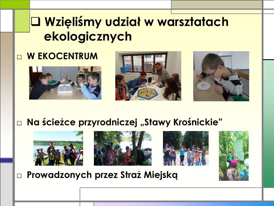Wzięliśmy udział w warsztatach ekologicznych