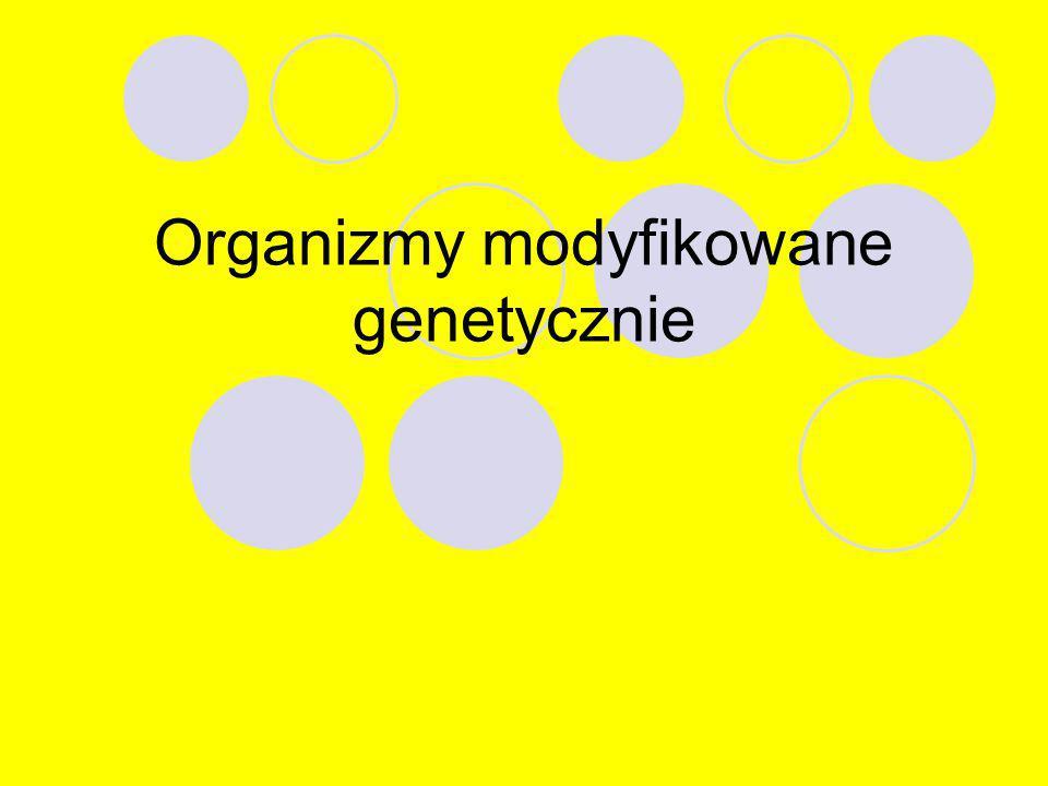 Organizmy modyfikowane genetycznie