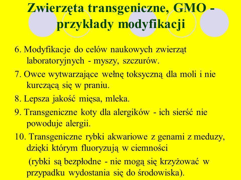 Zwierzęta transgeniczne, GMO - przykłady modyfikacji