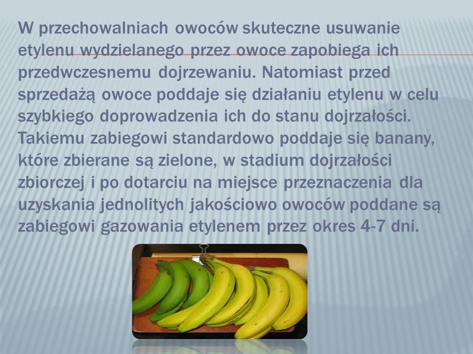 W przechowalniach owoców skuteczne usuwanie etylenu wydzielanego przez owoce zapobiega ich przedwczesnemu dojrzewaniu.