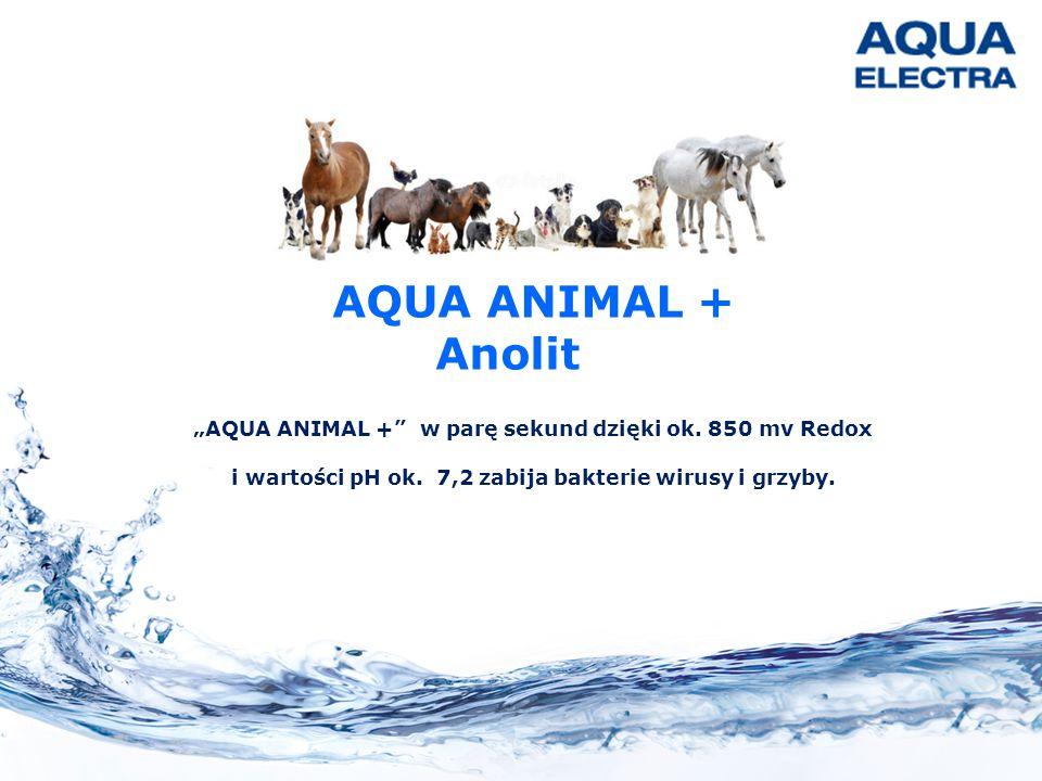 """AQUA ANIMAL + Anolit. """"AQUA ANIMAL + w parę sekund dzięki ok."""
