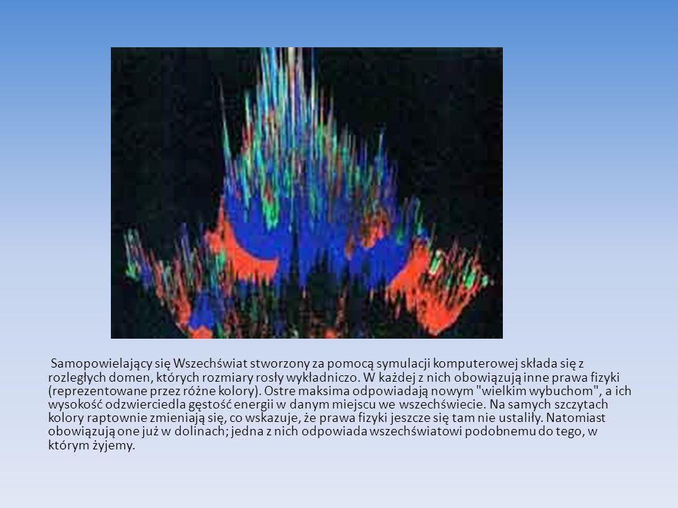 Samopowielający się Wszechświat stworzony za pomocą symulacji komputerowej składa się z rozległych domen, których rozmiary rosły wykładniczo.