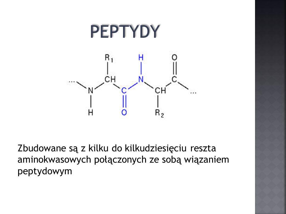PEPTYDY Zbudowane są z kilku do kilkudziesięciu reszta aminokwasowych połączonych ze sobą wiązaniem peptydowym.