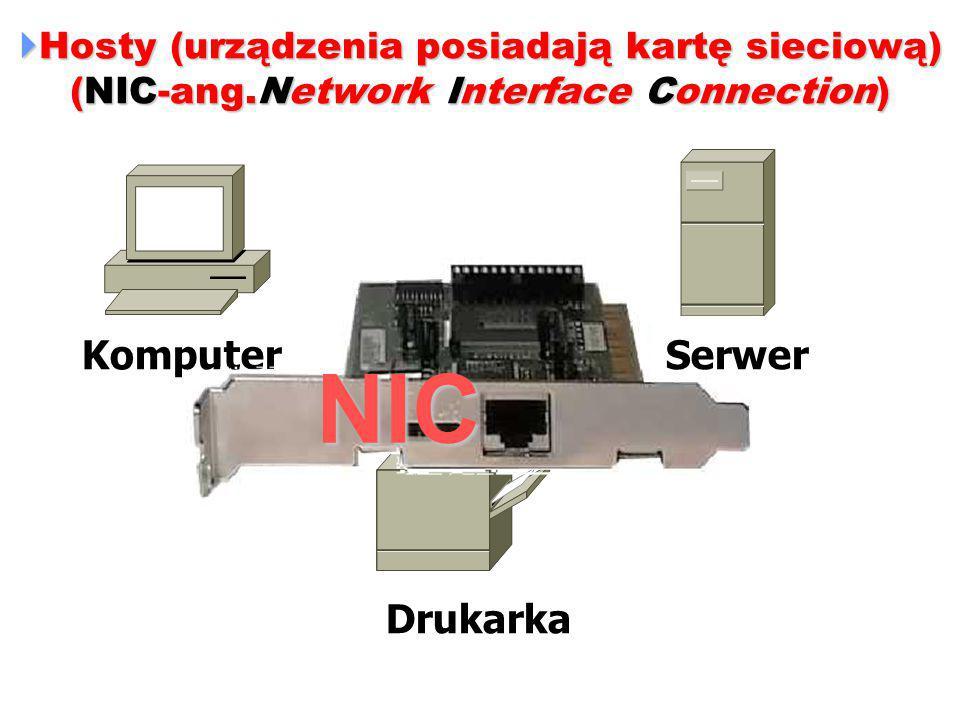 NIC Komputer Serwer Drukarka