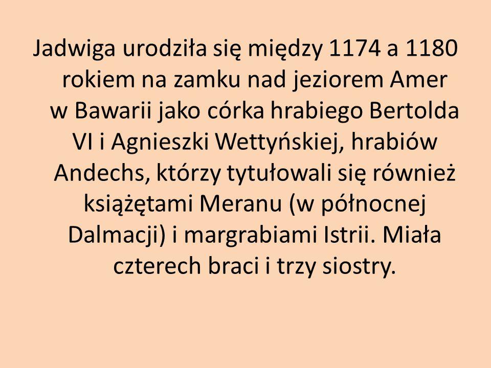 Jadwiga urodziła się między 1174 a 1180 rokiem na zamku nad jeziorem Amer w Bawarii jako córka hrabiego Bertolda VI i Agnieszki Wettyńskiej, hrabiów Andechs, którzy tytułowali się również książętami Meranu (w północnej Dalmacji) i margrabiami Istrii.
