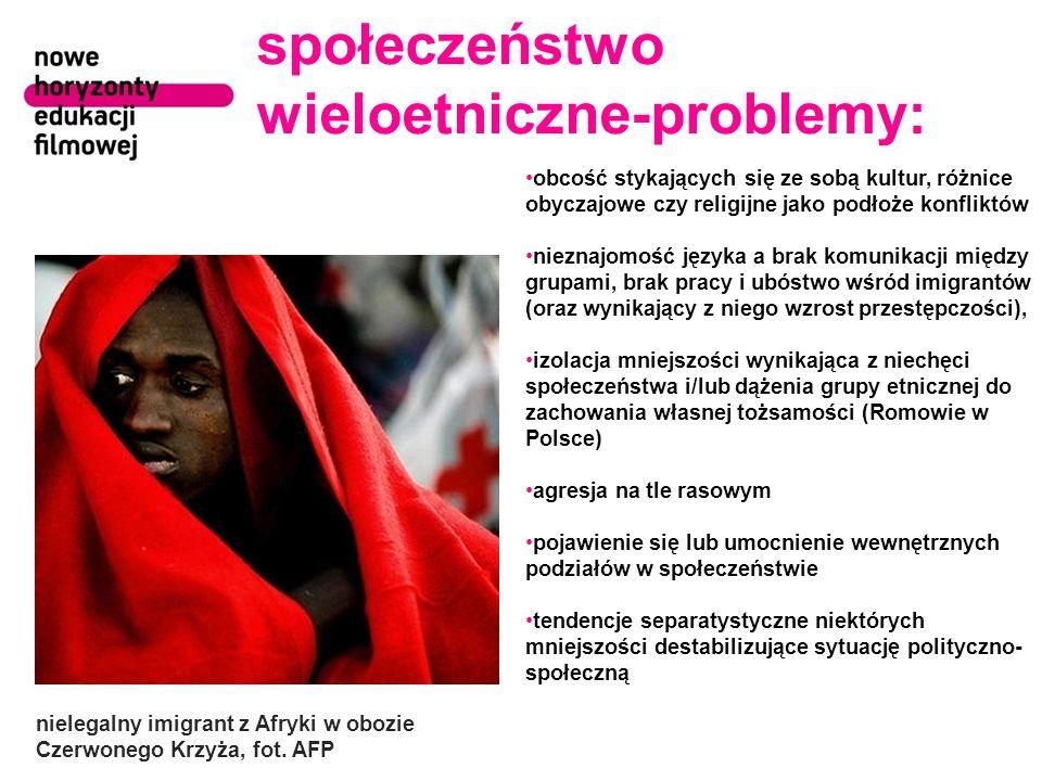 społeczeństwo wieloetniczne-problemy: