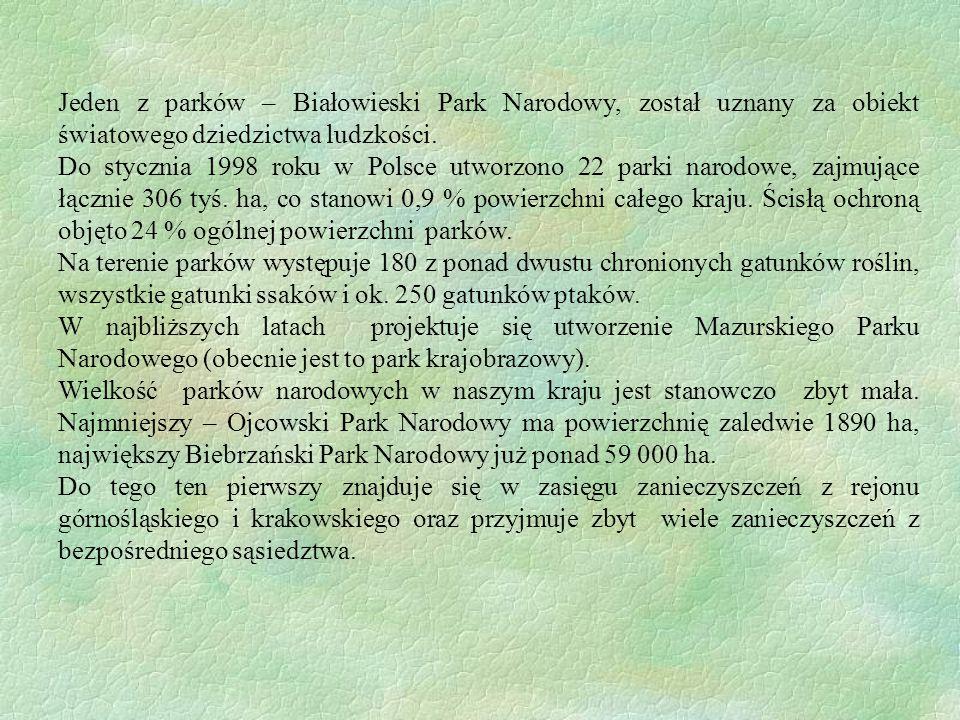 Jeden z parków – Białowieski Park Narodowy, został uznany za obiekt światowego dziedzictwa ludzkości.