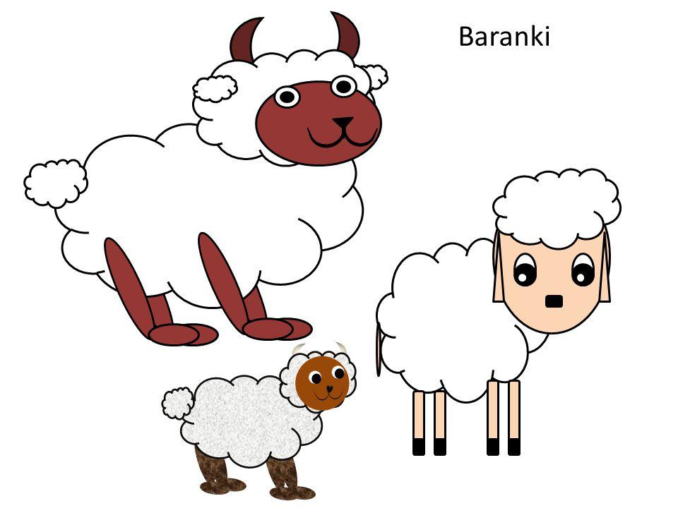 Baranki