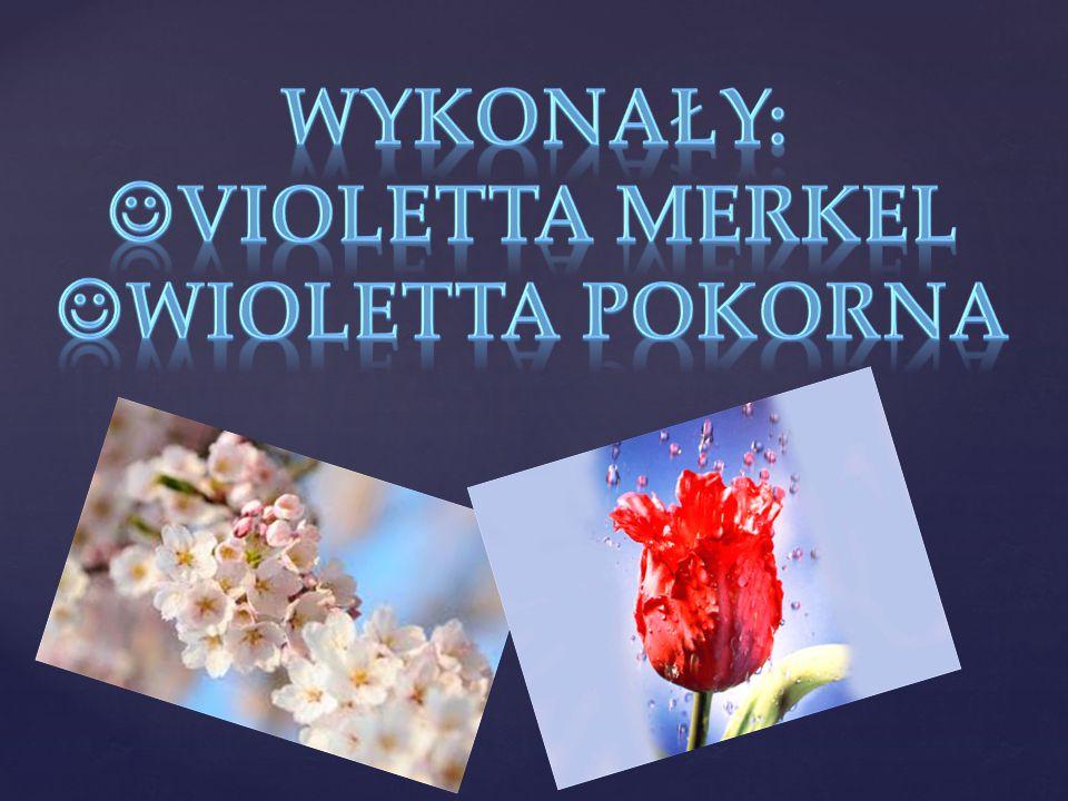 Wykonały: violetta merkel wioletta pokorna