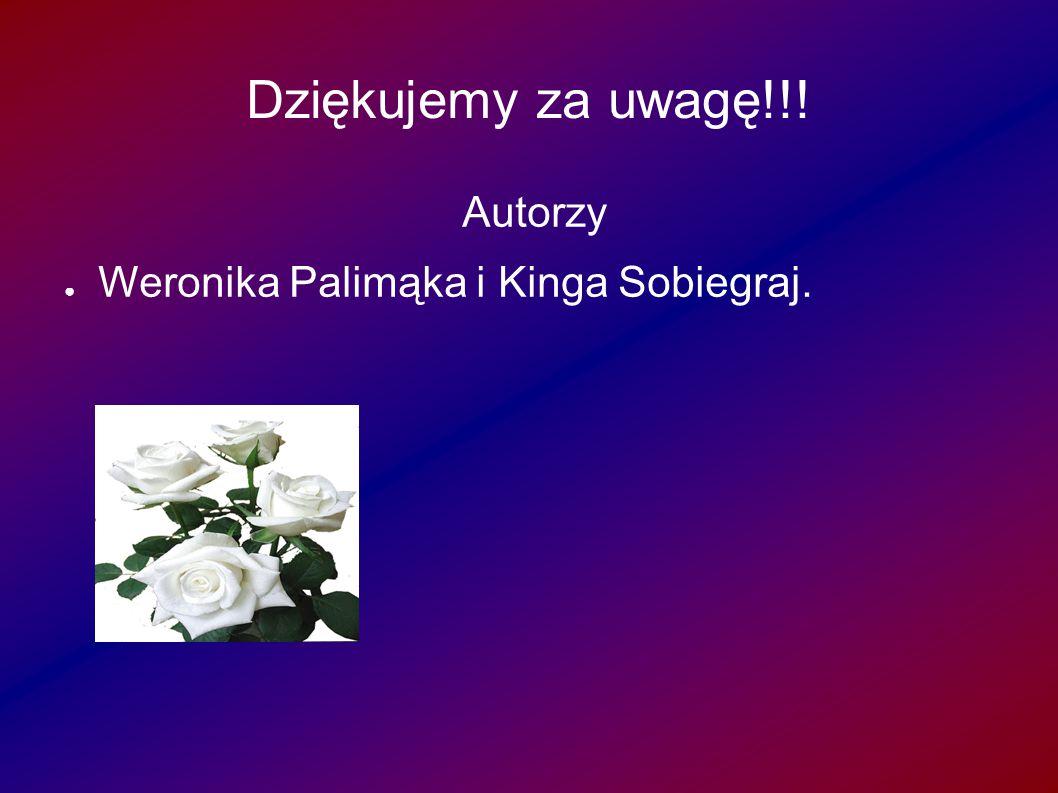 Dziękujemy za uwagę!!! Autorzy Weronika Palimąka i Kinga Sobiegraj.