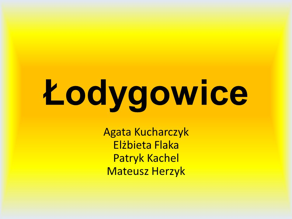 Agata Kucharczyk Elżbieta Flaka Patryk Kachel Mateusz Herzyk