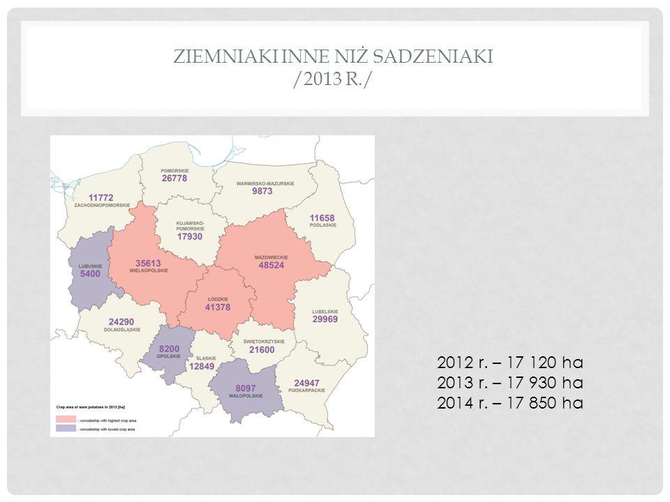 Ziemniaki inne niż sadzeniaki /2013 r./