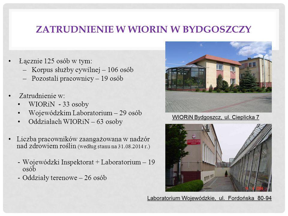 Zatrudnienie w WIORiN w Bydgoszczy