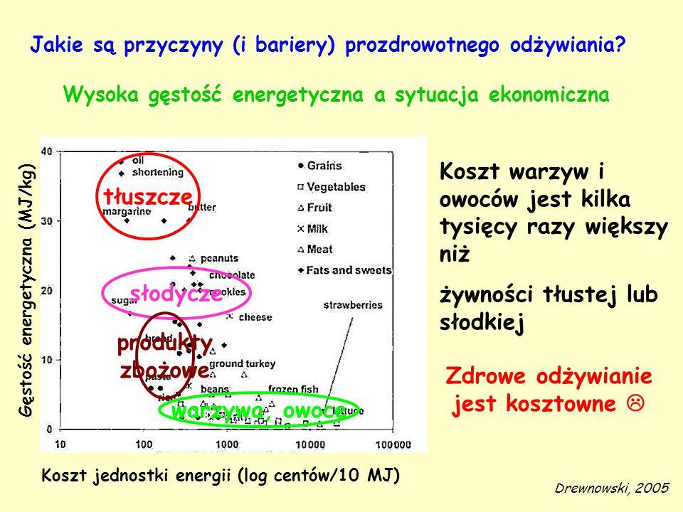 Wysoka gęstość energetyczna a sytuacja ekonomiczna