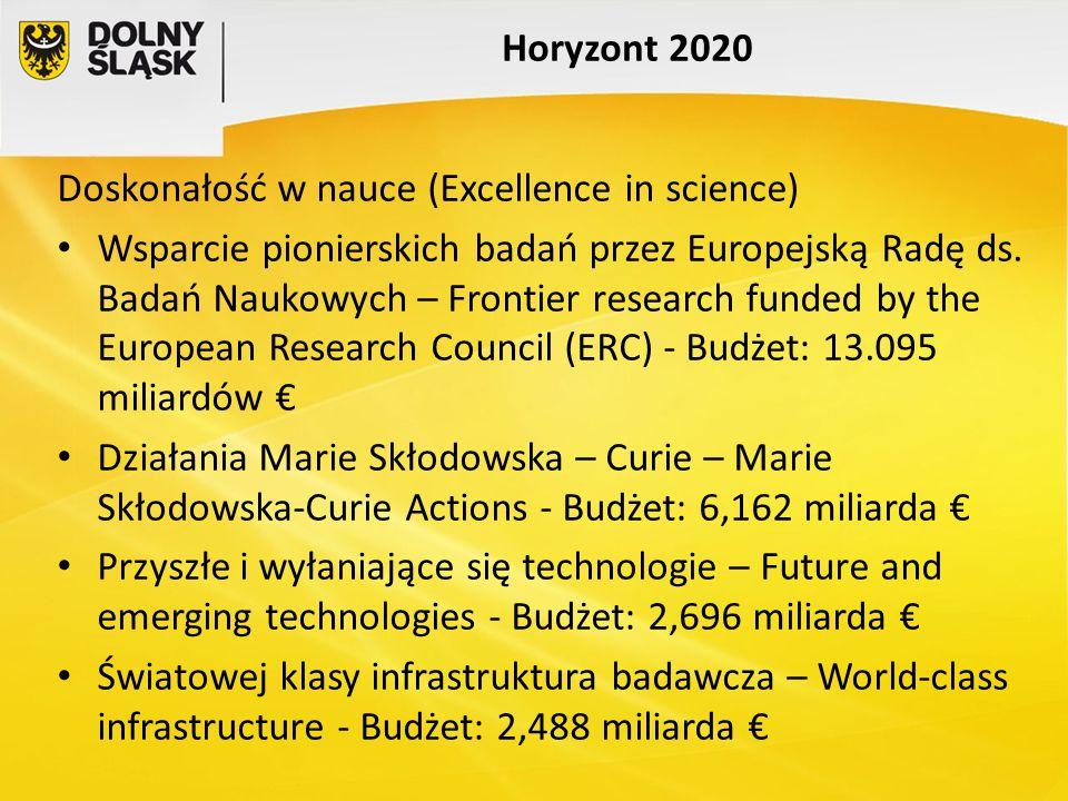 Horyzont 2020 Doskonałość w nauce (Excellence in science)