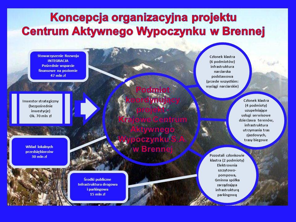 Koncepcja organizacyjna projektu