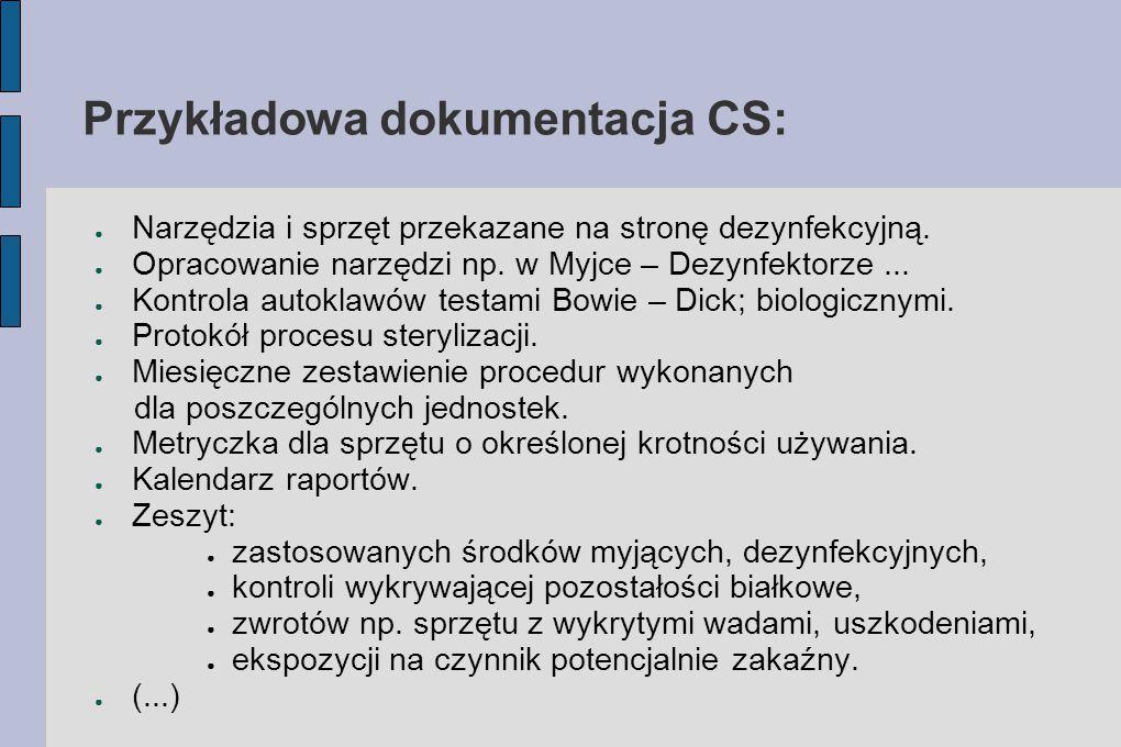 Przykładowa dokumentacja CS: