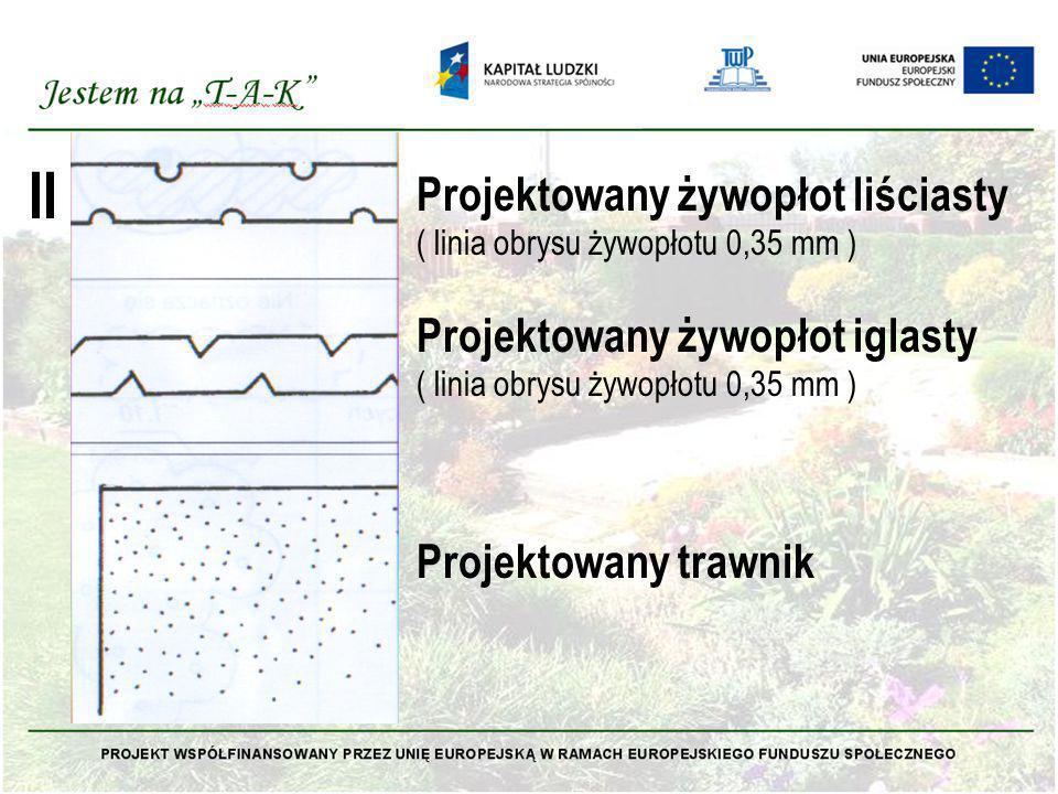 II Projektowany żywopłot liściasty Projektowany żywopłot iglasty