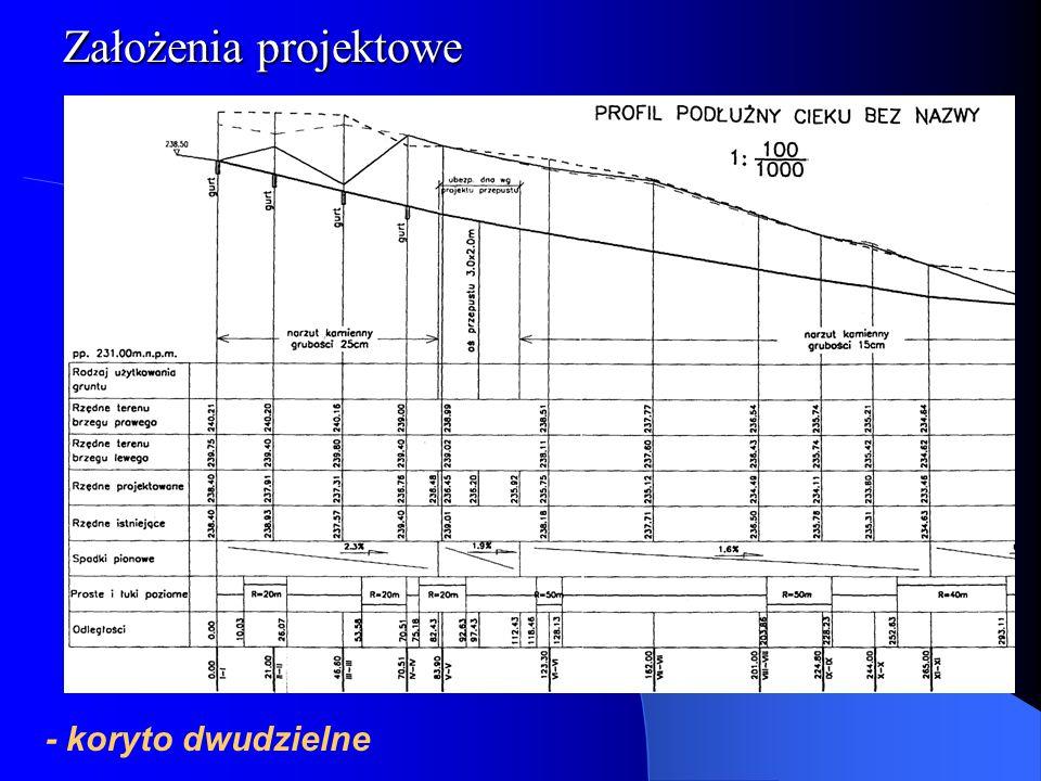 Założenia projektowe Plan Prezentacji - koryto dwudzielne