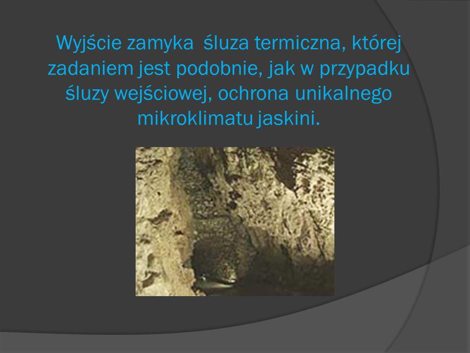 Wyjście zamyka śluza termiczna, której zadaniem jest podobnie, jak w przypadku śluzy wejściowej, ochrona unikalnego mikroklimatu jaskini.