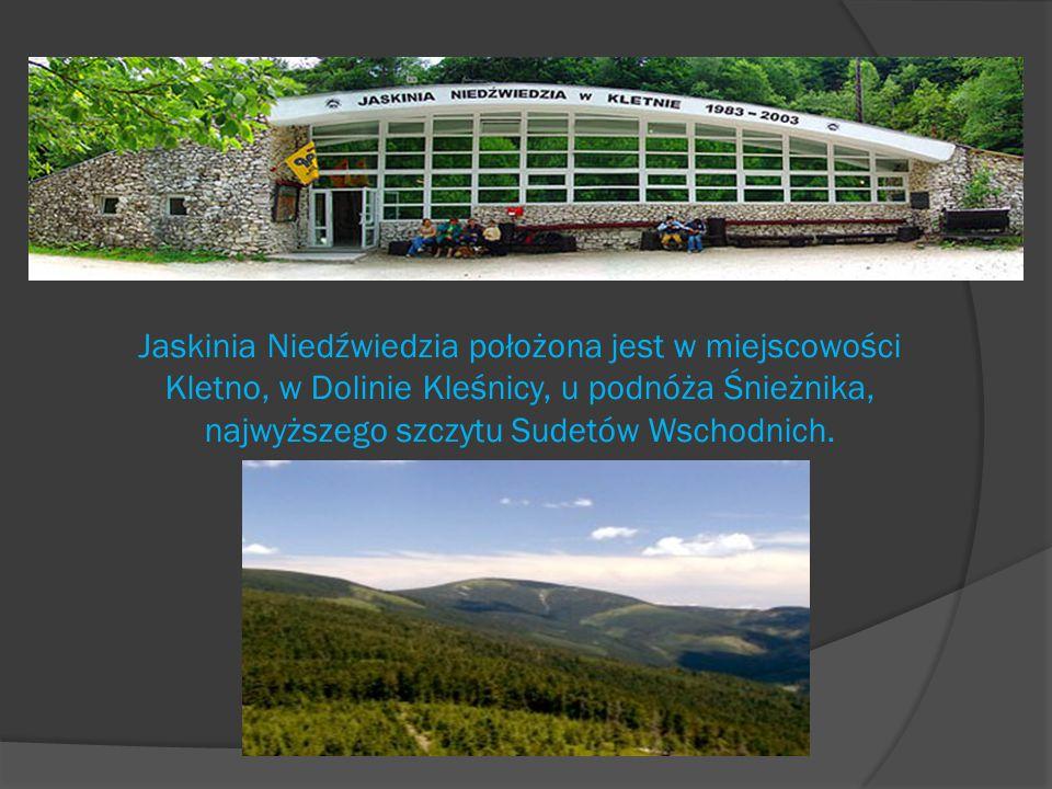 Jaskinia Niedźwiedzia położona jest w miejscowości Kletno, w Dolinie Kleśnicy, u podnóża Śnieżnika, najwyższego szczytu Sudetów Wschodnich.