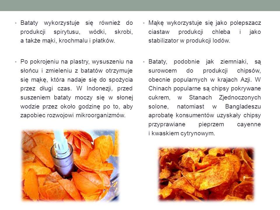 Bataty wykorzystuje się również do produkcji spirytusu, wódki, skrobi, a także mąki, krochmalu i płatków.