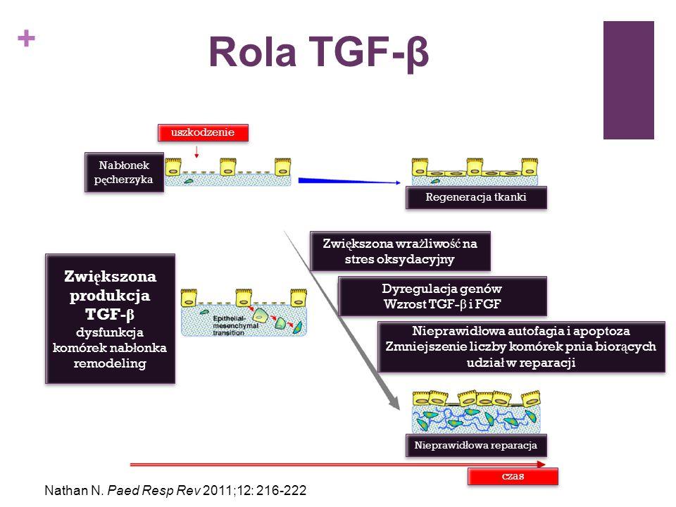 Zwiększona produkcja TGF-β