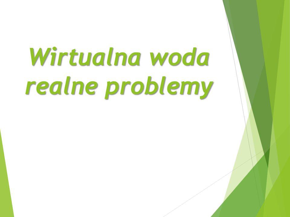 Wirtualna woda realne problemy