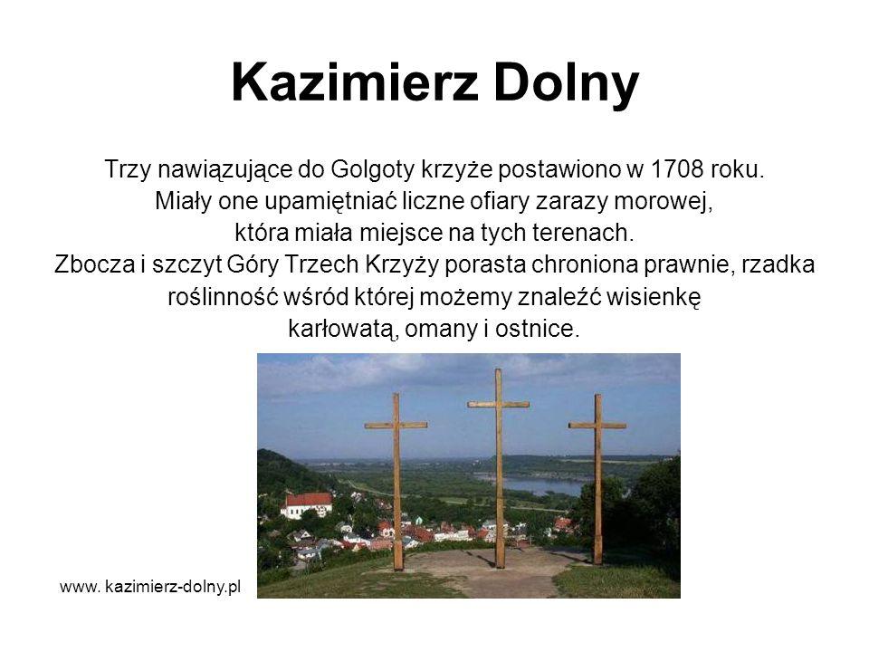 Kazimierz Dolny Trzy nawiązujące do Golgoty krzyże postawiono w 1708 roku. Miały one upamiętniać liczne ofiary zarazy morowej,