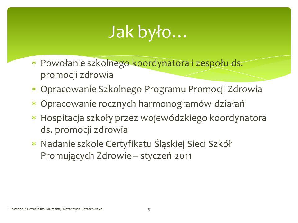 Jak było… Powołanie szkolnego koordynatora i zespołu ds. promocji zdrowia. Opracowanie Szkolnego Programu Promocji Zdrowia.