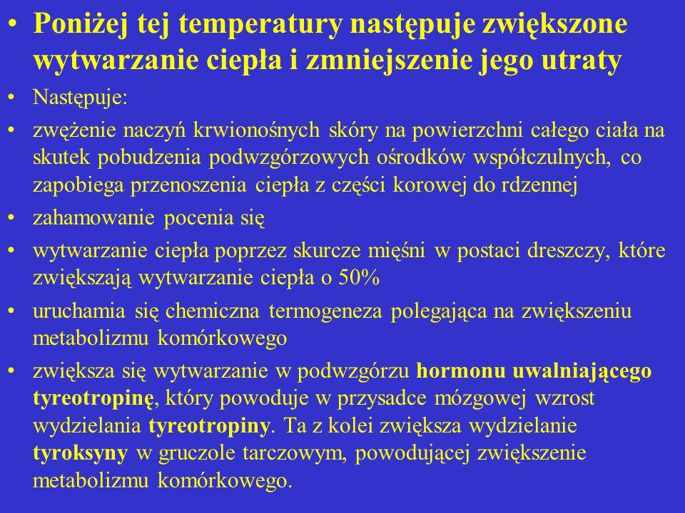 Poniżej tej temperatury następuje zwiększone wytwarzanie ciepła i zmniejszenie jego utraty