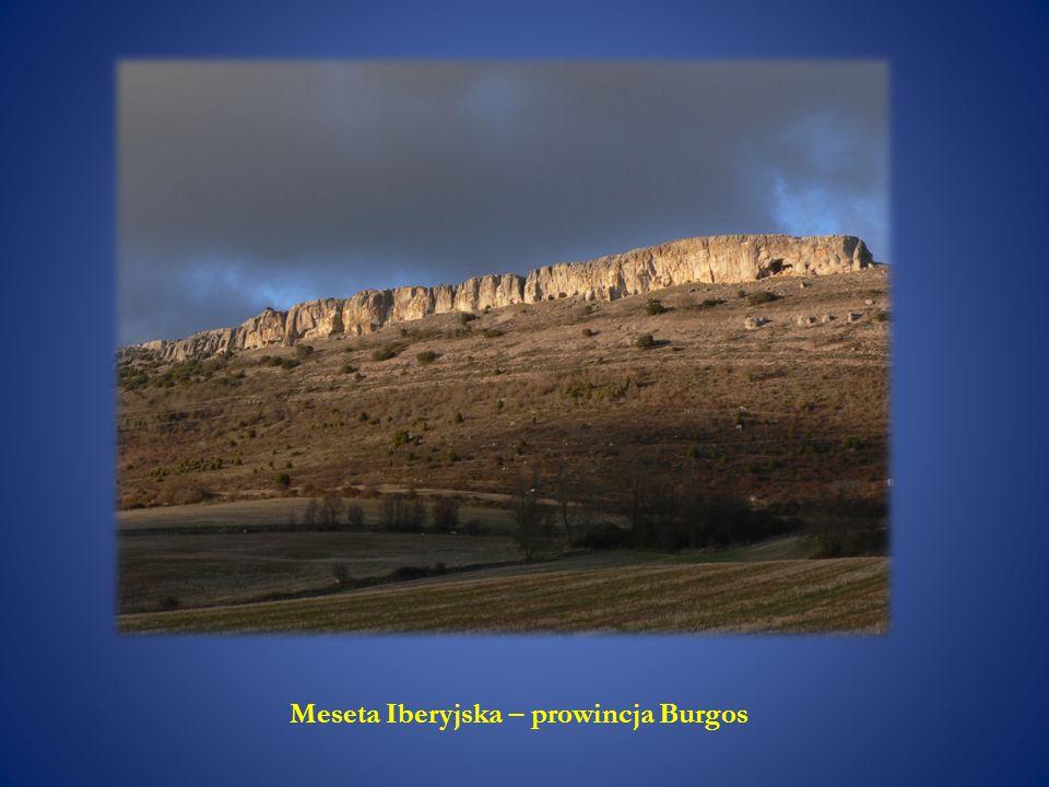 Meseta Iberyjska – prowincja Burgos